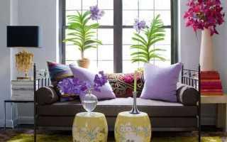Цветы для отдельных комнат