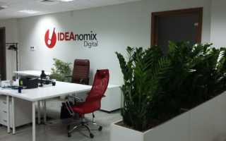 Неприхотливые комнатные растения для офиса