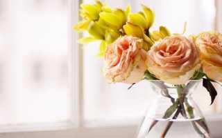 Как оживить увядающие розы
