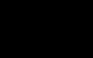Осенняя вегетация роз