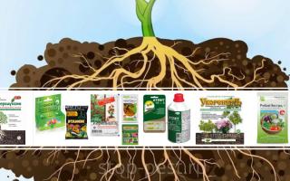 Стимулятор роста для комнатных растений