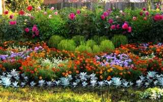 Какое время года подходит для создания цветника