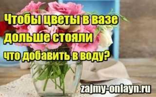 Что добавить в цветы чтобы дольше стояли