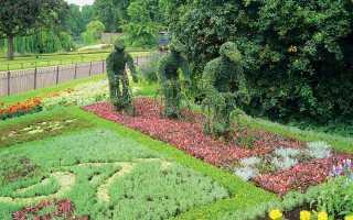 Элемент садового участка цветник рабатка