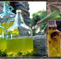 Каланхоэ настойка на водке применение