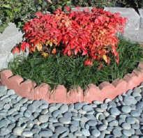 Забор для цветника из деревянных колышек