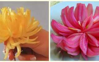 Хризантема из лука