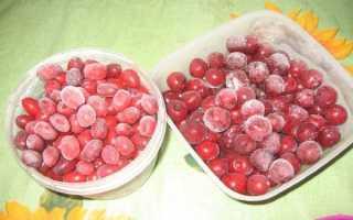 Как правильно заморозить помидоры на зиму в морозилке