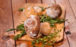 Особенности заморозки грибочков