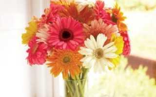 Что советуют в народе чтобы цветы долго стояли